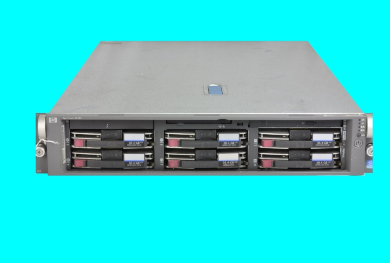 An HP Proliant DL385 that had been running Citrix across 6 SCSI hard disks, when suddenly 2 of the disks in the raid5 array had failed. So the unit was sent to us for data recovery when the drives failed to start up.
